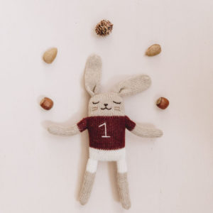 bunny main sauvage soft toy
